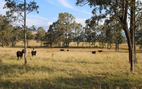 Lot 60 2680 Glendonbrook Road, Gresford NSW 2311