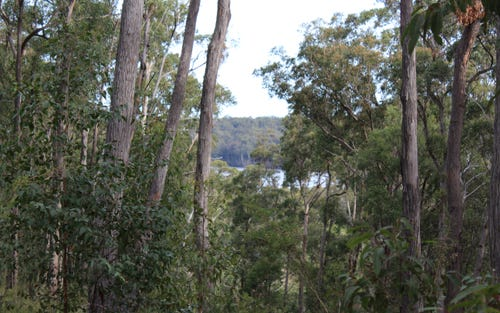 Lot 19 Old Nelligen Road, Nelligen NSW 2536