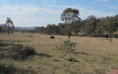 Lot 295 Wingraves Road, Mudgee NSW 2850