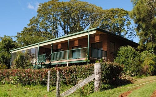 667 Old Coast Road, Dorrigo NSW 2453