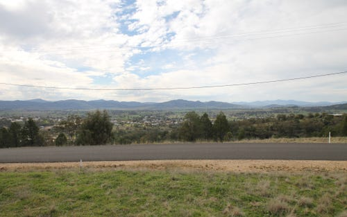 65 Ray Carter Drive, Quirindi NSW 2343