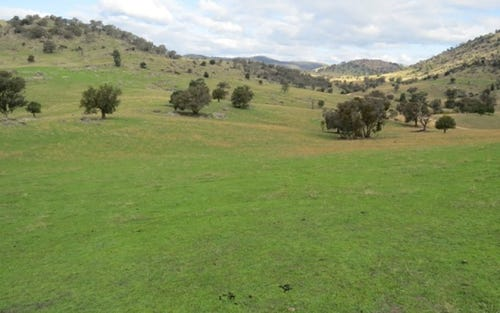 Lot 145 Tarrants Gap Road, Wyangala NSW 2808