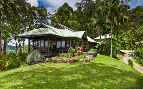 46 Beech Lane, Wilsons Creek NSW 2482