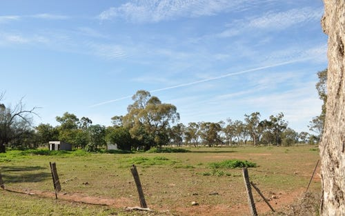 Lots 104 and 115, BELGROVE, Trangie NSW 2823