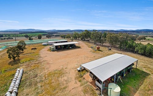 942 Warrah Ridge Road, Quirindi NSW 2343