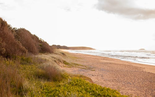 Lot 617, Water Gum Close, Sapphire Beach NSW 2450