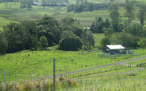 718 Back Creek Road, Kyogle NSW 2474