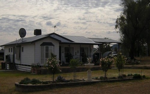445 Elcombe Road, Gravesend NSW 2401