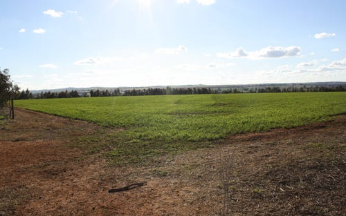 Lot 7 Roedigers Lane, Junee NSW 2663