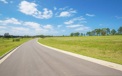Lot 214 Waterside Pastures, Medowie NSW 2318