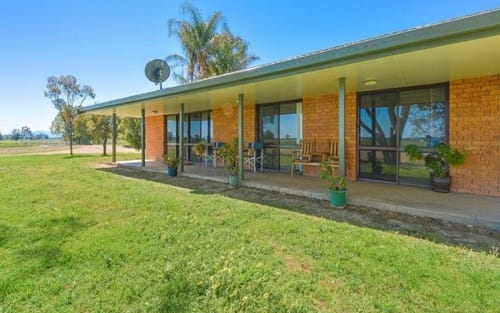 74 Old Wean Road, Gunnedah NSW 2380