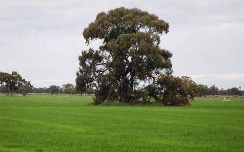 . Corraleigh, Wakool NSW 2710