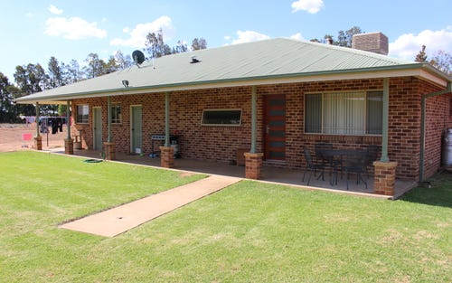 863 Walsh Rd, Leeton NSW 2705