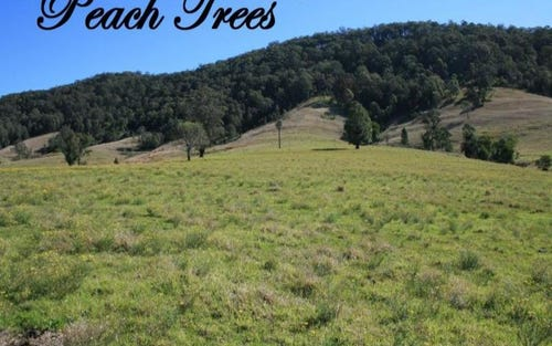 1140 Mill Creek Road, Stroud NSW 2425