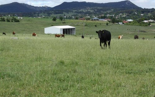 Lot 120 Bellevue Road, Tenterfield NSW 2372