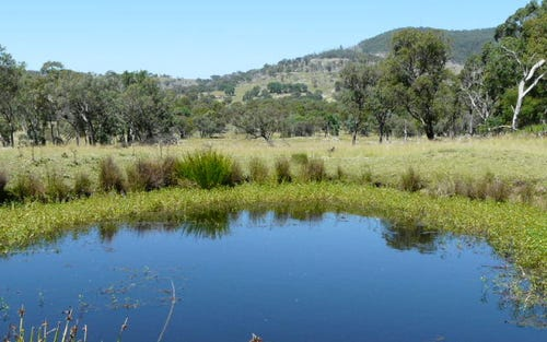 Lot 1, being 5 ACRES 35 Holleys Road, Tenterfield NSW 2372