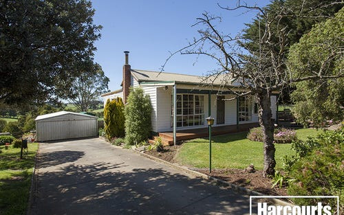 181 Nilma Bona Vista Road, Bona Vista NSW 2350