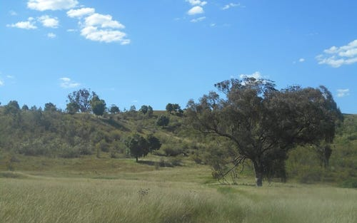 Lot 91 Bylong Valley Way, Bylong NSW 2849