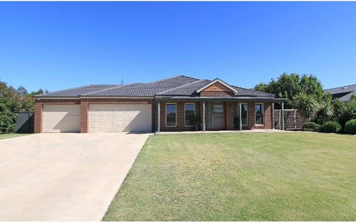 17 Shiraz Court, Moama NSW 2731