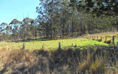 Lots 90, 99 & 100 Smiths Creek Road, Smiths Creek NSW 2460