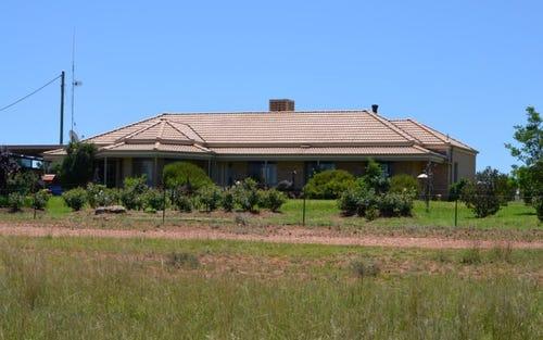 ''Felton'' Melrose Rd, Condobolin NSW 2877