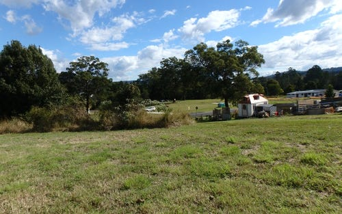 Lot 30, Alternative Way, Upper Coopers Creek NSW 2480