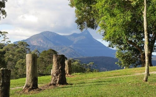 213 Mount Burrell Road, Mount Burrell NSW 2484