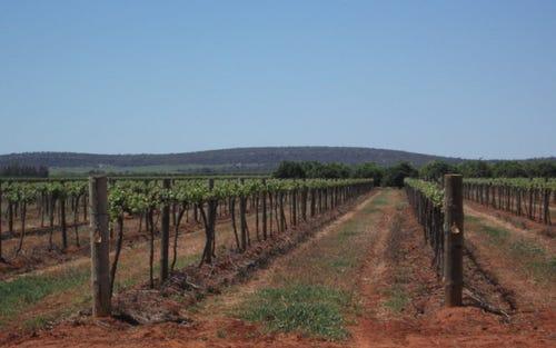 Farm 571 New Farms Road, Nericon NSW 2680