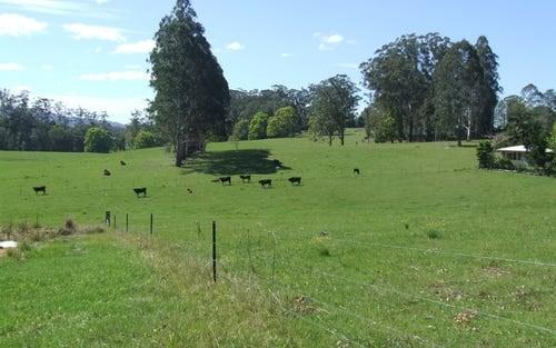 220 Mardells Road, Bucca NSW 2450