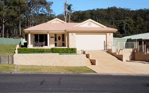 65 Whimbrel Drive, Nerong NSW 2423