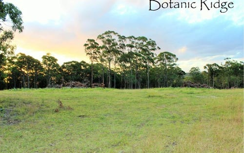 Botanic Ridge Duns Creek Road, Duns Creek NSW 2321