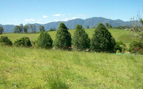 Lot 4, 285 Hydes Creek Road, Bellingen NSW 2454