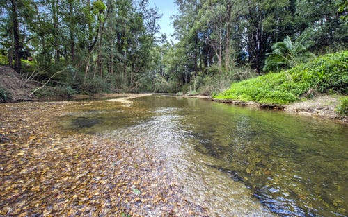 1562 Kalang Road, Bellingen NSW 2454