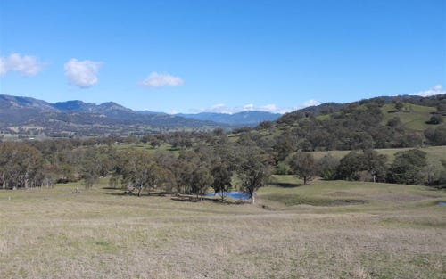 Lot 221 Woolshed Road, Blandford NSW 2338