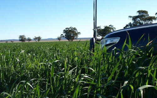 LIVERPOOL PLAINS, Quirindi NSW 2343