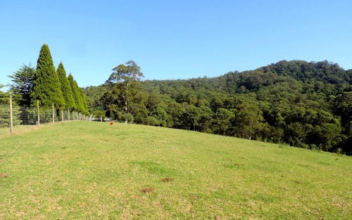 Lot 201 1110 Illaroo Road, Tapitallee NSW 2540