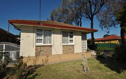 213 Hector St, Sefton NSW 2162