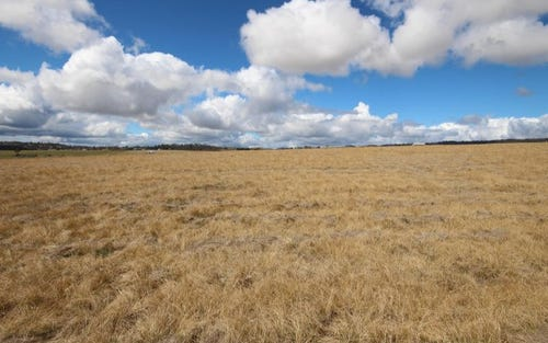 Lot 4 East Street, Tenterfield NSW 2372