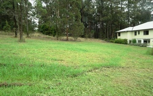 Lot 1230, 29 Grangewood Avenue, Tallwoods Village NSW 2430