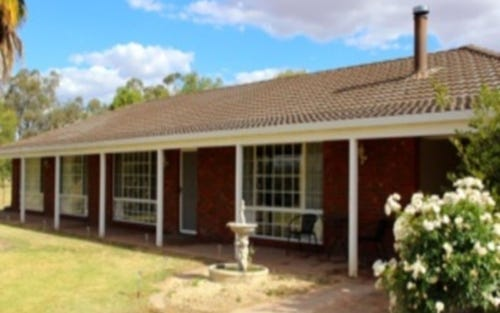 63 Angaston Road, Henty NSW 2658