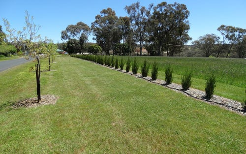 Lot 107 Queen Street, Molong NSW 2866