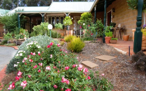 210 Adams Street, Mourquong NSW 2648