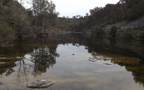 LOT 9, Billabong Waters, Wellingrove NSW 2370