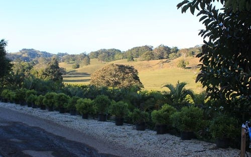 1172 Reserve Creek Road, Pottsville NSW 2489
