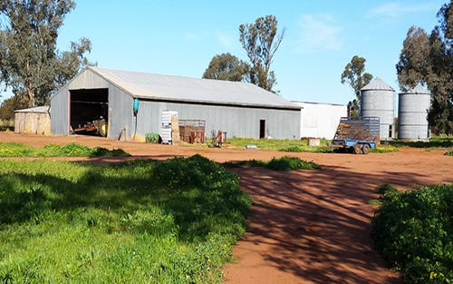Wallaroi West, Condobolin NSW 2877