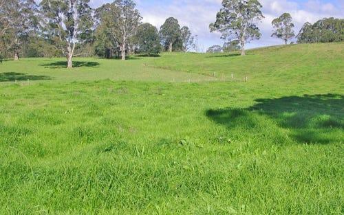 Lots 27, 28 & 9 247 McIndoes Road, Deer Vale, Dorrigo NSW 2453