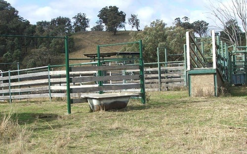 The Farm 830 Weabonga Road, Weabonga NSW 2340