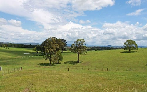 Lot 17, 11 Springfields Drive, Greenhill NSW 2440