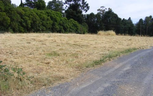Lot 4 Wollondilly Avenue, Goulburn NSW 2580