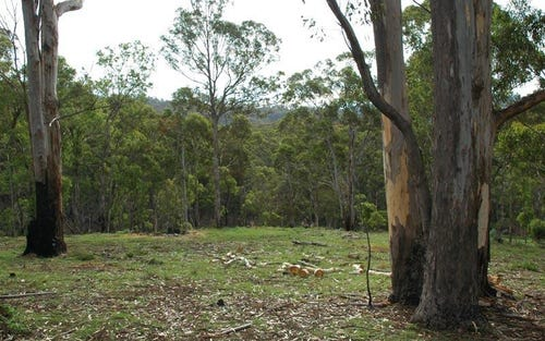 Lot 241 Florabunda Lane, Nethercote NSW 2549